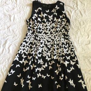 Talbots Jacquard Butterflies Dress Size 16